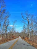 The road to Dowdell's Knob