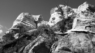 The canyons make for some really cool black and white